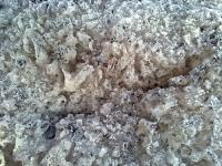 Körnige und eisige Substanz des Morgenschnees