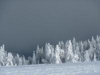 feldberg_20120219_038