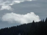 feldberg_20120225_050