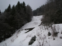 Quellen am Ahornbühl