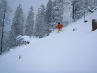 in the Pow