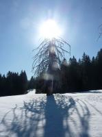 feldberg_20120329_034