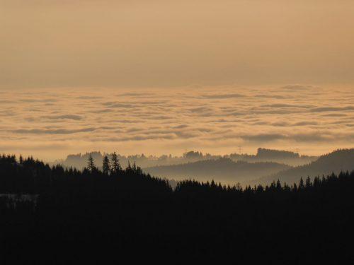 erste Sonnenstrahlen über dem Schwarzwald, wahrscheinlich auf für die nächste Zeit die letzten