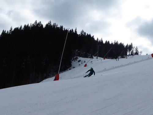 Carving FIS